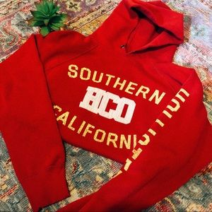 Vintage VSCO Hollister Hoodie sweatshirt ☆